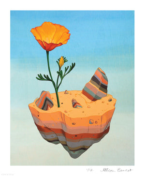 """Desert Poppy"" by Allison Bamcat - Limited Edition, Archival Print - 14 x 17"""