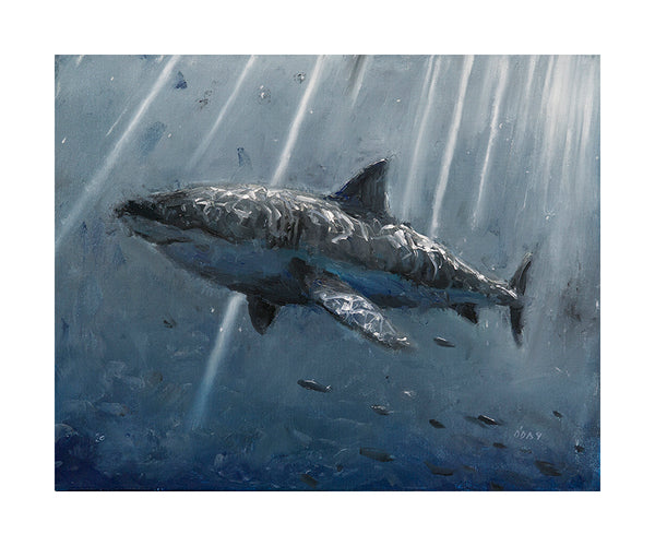 "Adam J. O'Day ""Great White"" - BLM BENEFIT TIMED RELEASE - 10 x 12"""