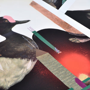 """The Tufted Duck"" by Monica Canilao - Hand-Embellished Print"