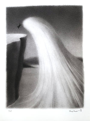 """Horatio's Wave"" by Renee French - Archival Print, Edition of 25 - 12 x 16"""