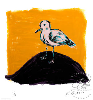 """Pink Gull"" by Russ Pope - Limited Edition, Archival Print"