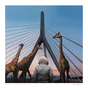 "Scott Listfield ""Zakim"" - Archival Print, Limited Edition of 50 - 17 x 17"""