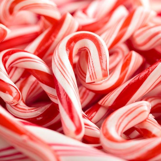 Candy Cane Scented Melt Pack - End Of Line