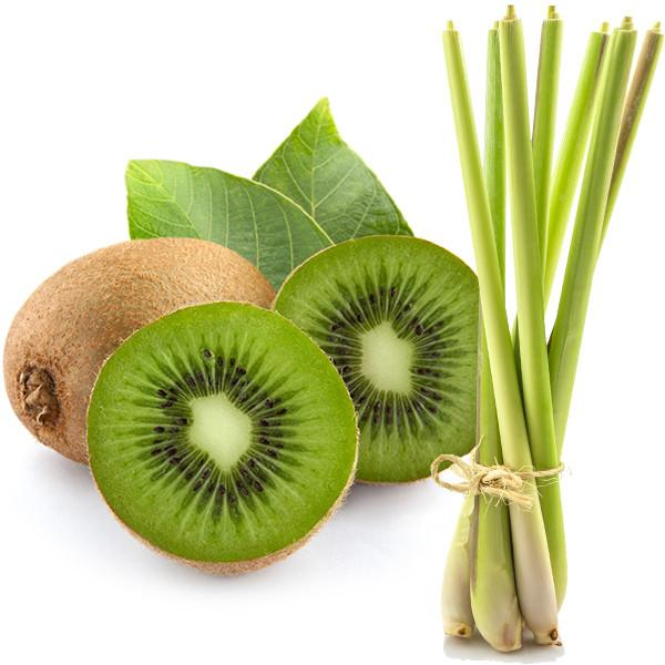 Kiwi Fruit and Lemongrass Soy Shot Pot  Aroma Addiction