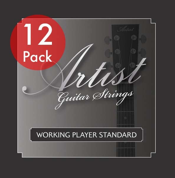 Artist ACST1047 12 Sets of Acoustic Guitar Steel Strings 10-47