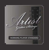 Artist ACST1152 Acoustic Guitar Steel Strings Custom Light 11-52