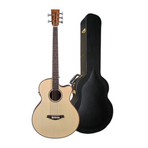 Artist ABJ605CEQ 5-String Electro-Acoustic Bass with EQ + Hard Case