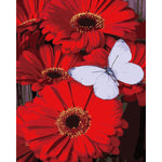 "DIY Painting By Numbers -Flower And Butterfly (16""x20"" / 40x50cm)"