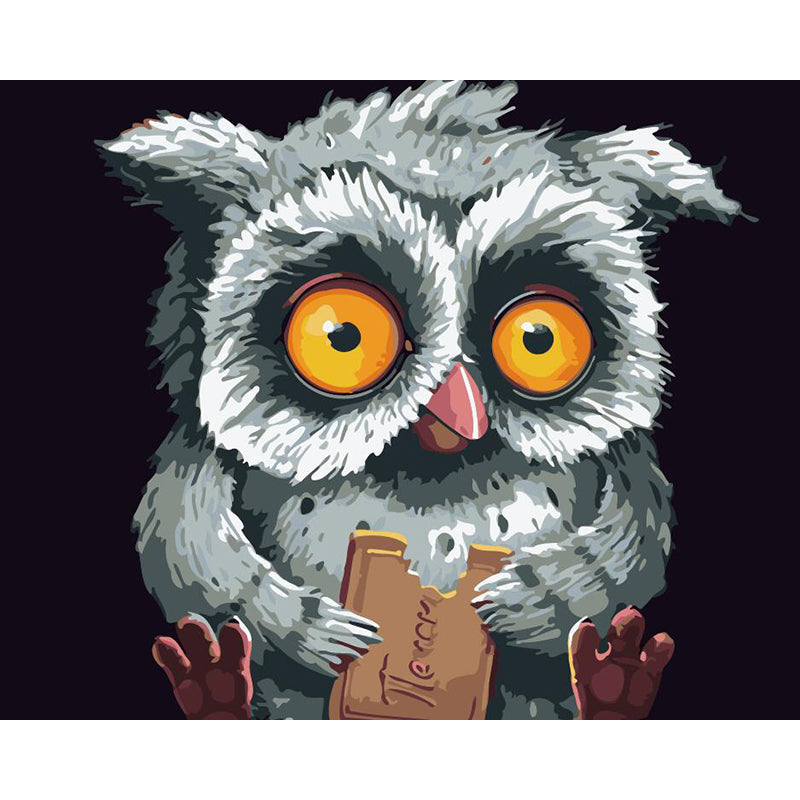 "DIY Painting By Numbers - Owl Eating Chocolate (16""x20"" / 40x50cm)"