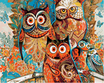 "DIY Painting By Numbers -  Colorful Owls (16""x20"" / 40x50cm)"