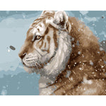 "DIY Painting By Numbers -Tiger In Snow (16""x20"" / 40x50cm)"