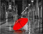 "DIY Painting By Numbers -Red Umbrella  (16""x20"" / 40x50cm)"