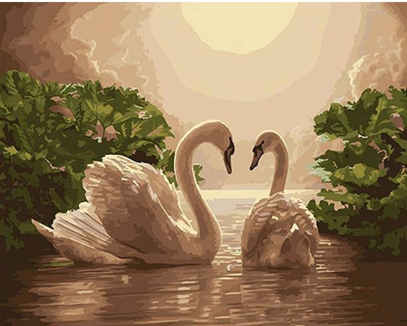 "DIY Painting By Numbers - Lover Swan(16""x20"" / 40x50cm)"