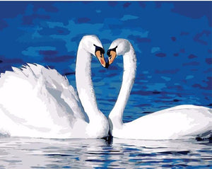 "DIY Painting By Numbers - Swan Lovers (16""x20"" / 40x50cm)"