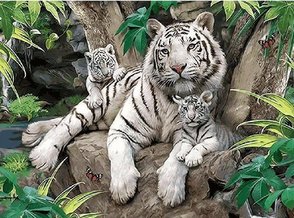 "DIY Painting By Numbers - White Tigers (16""x20"" / 40x50cm)"