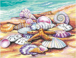 "DIY Painting By Numbers -Shells  (16""x20"" / 40x50cm)"
