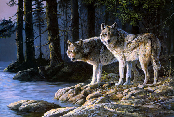 "DIY Painting By Numbers -Wolf By The River(16""x20"" / 40x50cm)"