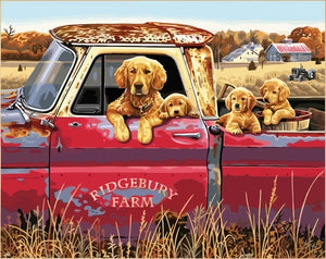 "DIY Painting By Numbers -Dogs In A Car  (16""x20"" / 40x50cm)"