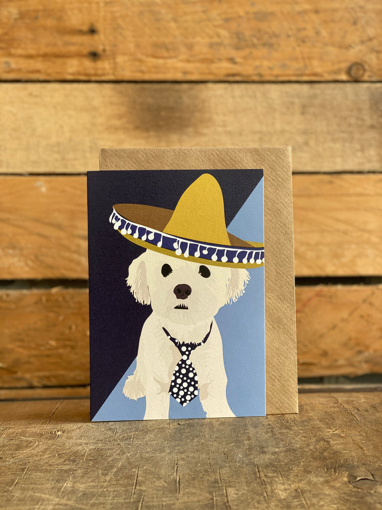 sombrero dog greeting card for any occasion