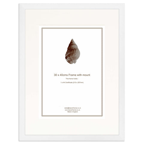Elite Collection: White Frame including mount for an A4 Certificate