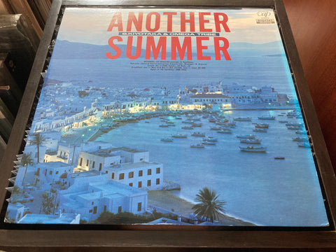 S. Kiyotaka & Omega Tribe - Another Summer LP 33⅓rpm (Out Of Print) (Graded:NM/EX)