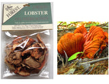 Dried USA Lobster Mushrooms