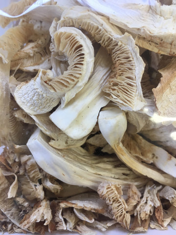 Dried Matsutake Mushrooms