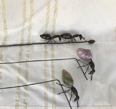 Metal Curios - Ants On Stick