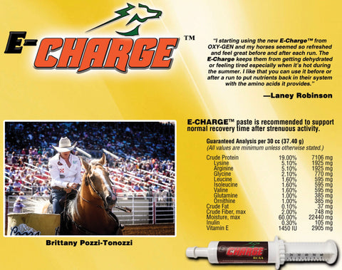 E-Charge Paste