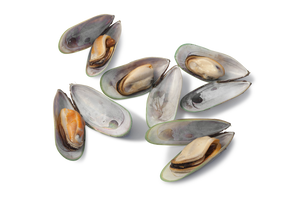 Green-Lipped Mussel