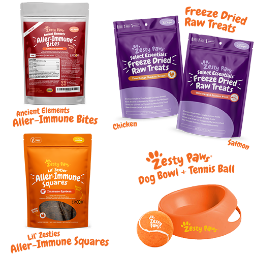 Allergy & Immune Yappy Spring Kit for Dogs
