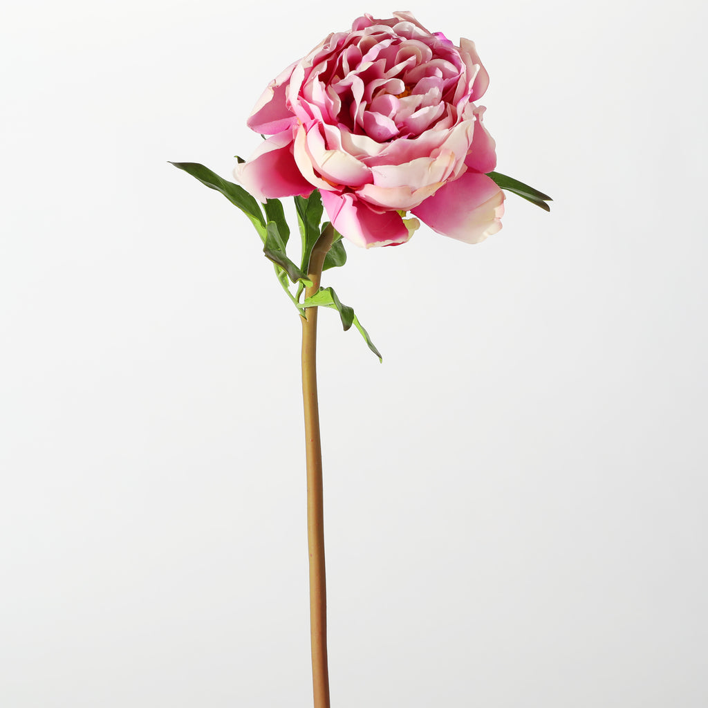 "The Perfect Peony Real Touch Forever Flower 22"" Stem - Pink Cerise"