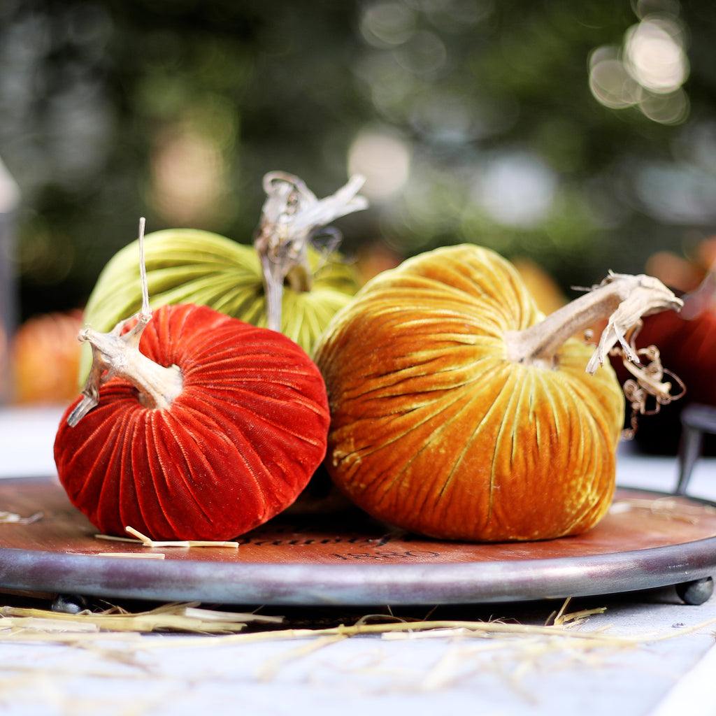 Medium Classic Harvest Set - Plush Pumpkin Luxury Velvet Real Stem Pumpkin Fall Decor