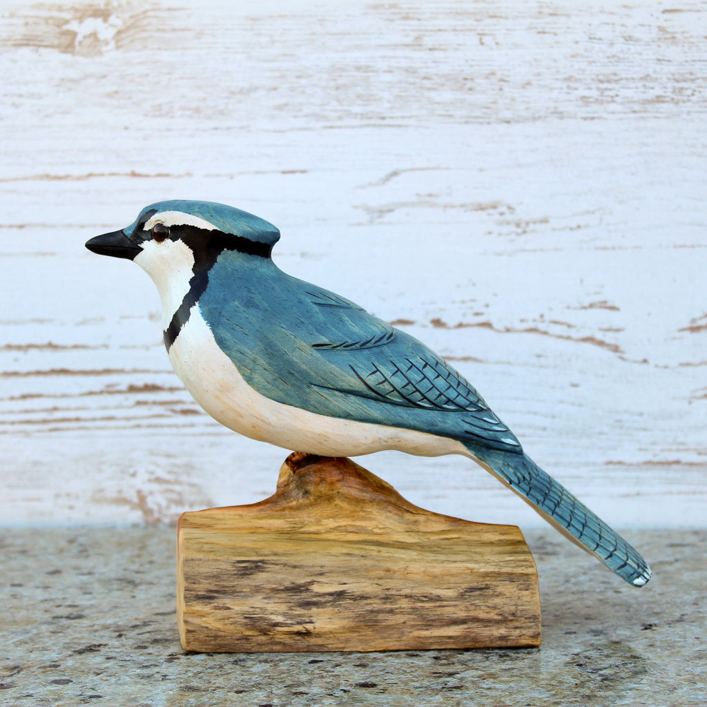 Hand Carved Male Bluejay Bird Life Sized Perched on Wood Stand