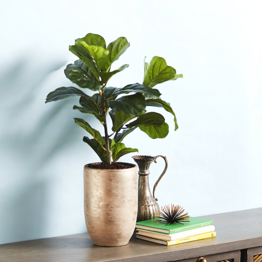 Faux Fiddle Leaf Houseplant in Champagne Gold Etched Pot