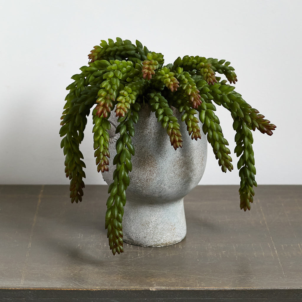 "Faux Succulent ""Wild Hair"" Houseplant in Concrete Face Planter"