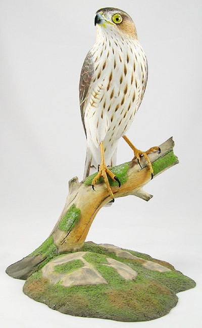 Sharp-Shinned Hawk (juvenile) - Hand Carved Wooden Bird