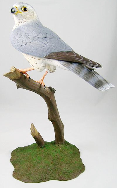 Merlin - Hand Carved Wooden Bird