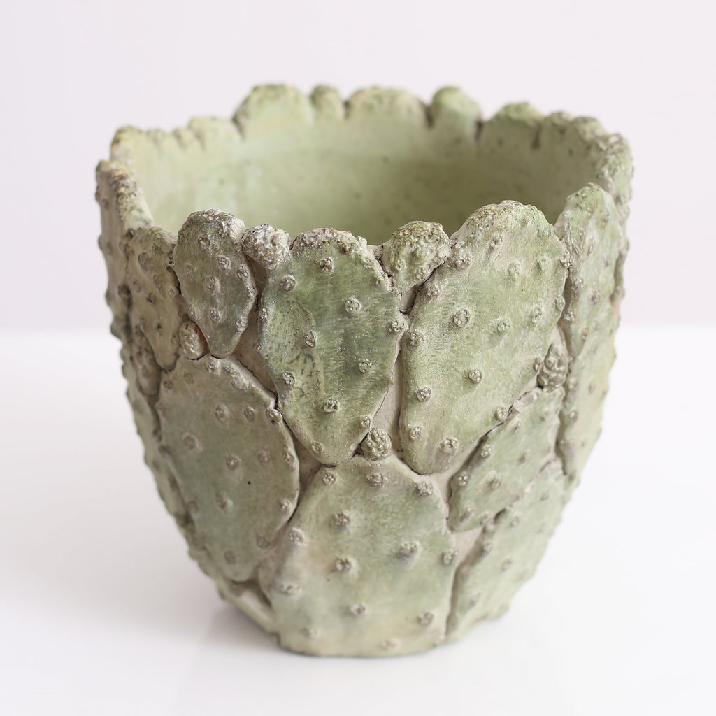 Medium Textured Cactus Flower or Plant Pot