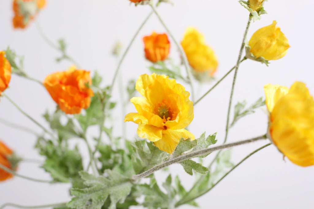 Yellow + Orange Mixed Poppy Floral Arrangement in Industrial Glass Bottle - 2 Size Options
