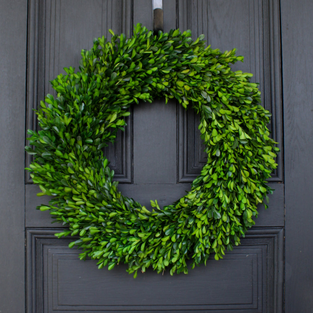 Natural Preserved Green Boxwood Everyday Front Door Wreath 22""