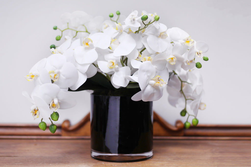 Real Touch White Orchid Everyday Floral Arrangement in Black Glass Vase