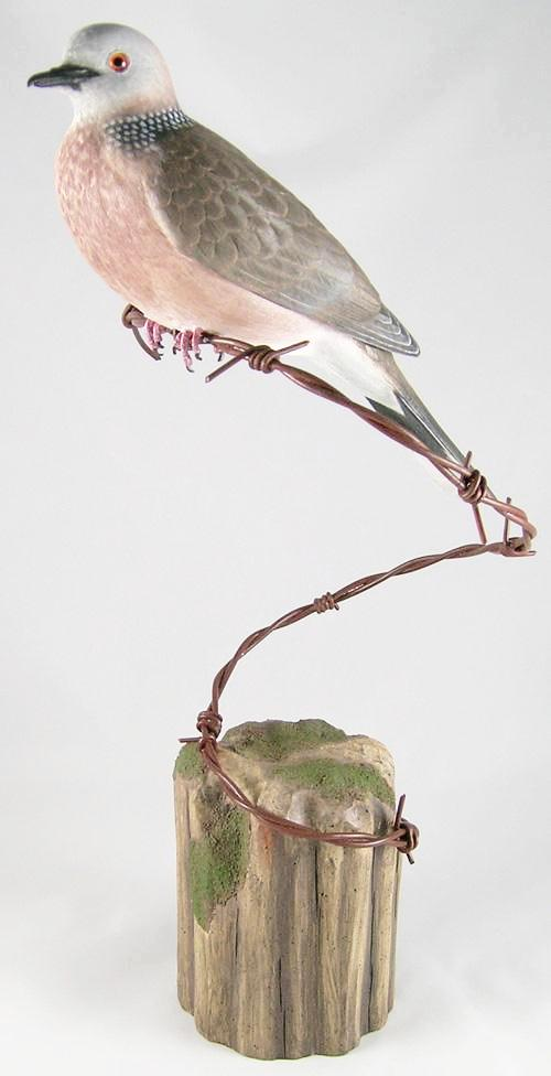 Spotted Dove - Hand Carved Wooden Bird