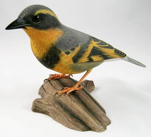 Varied Thrush - Hand Carved Wooden Bird