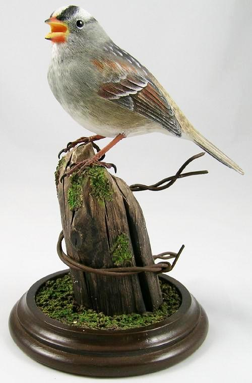 White-crowned Sparrow - Hand Carved Wooden Bird