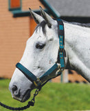Padded Halter with Breakaway