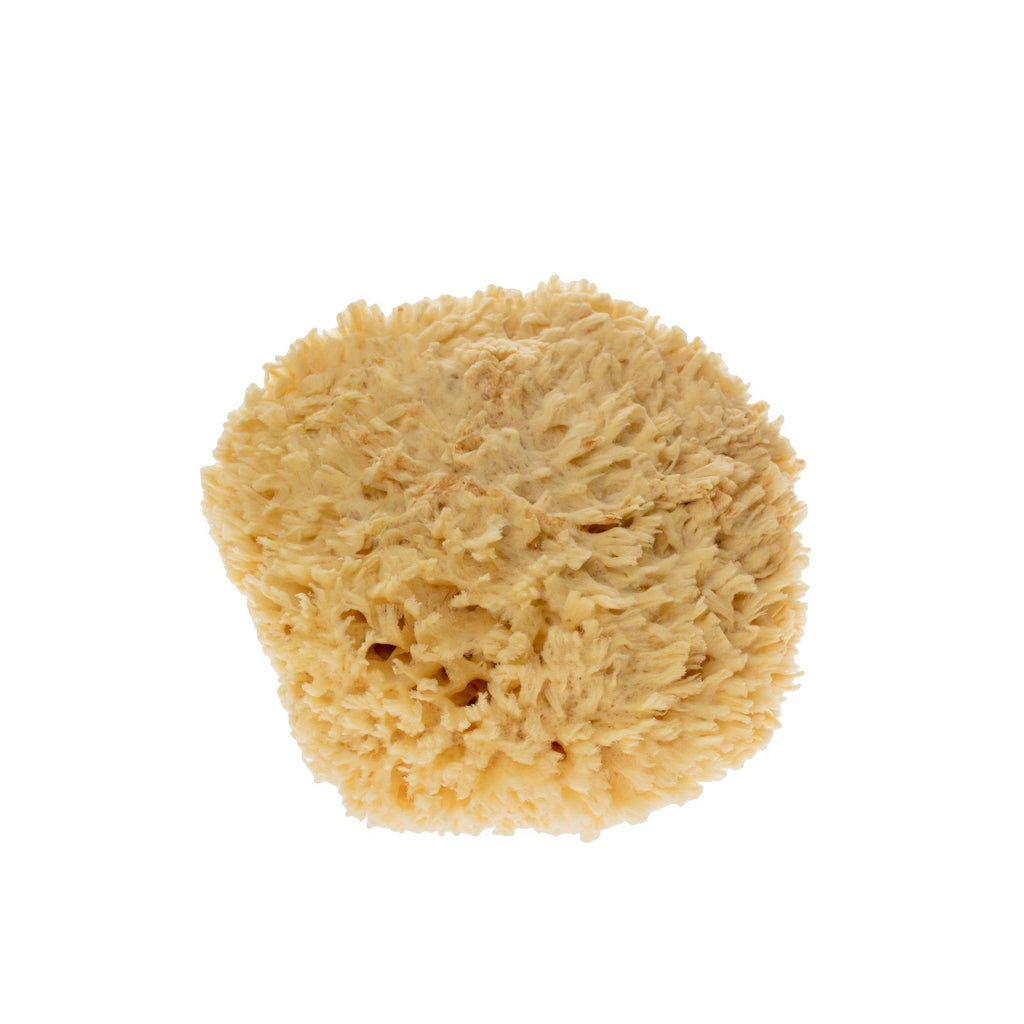 "Rock Island Natural Sea Wool Sponge, 7"" Large"