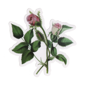MP Rose Stickers