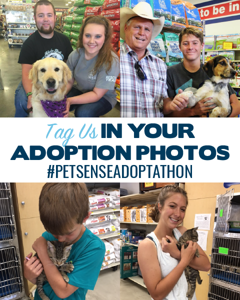 Tag Us in Your Adoption Photos using #PetsenseAdoption