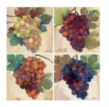 Grape Harvest Coasters
